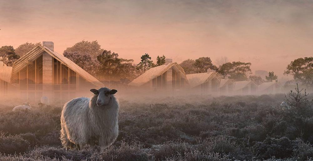 duurzame recreatiewoning Texel